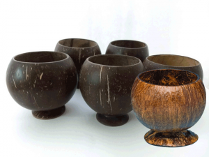 5 Real Coconut Cups - Free Shipping via USPS - Product Image